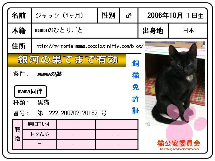 飼猫免許書