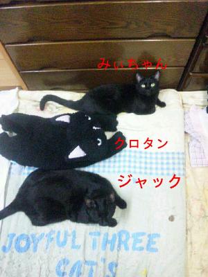 20121015073854_1.jpeg