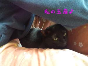 Giyokuza